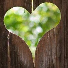 bs-postnatale-image-hart-doorkijkje
